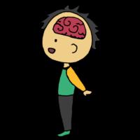 人間の脳のフリーイラスト