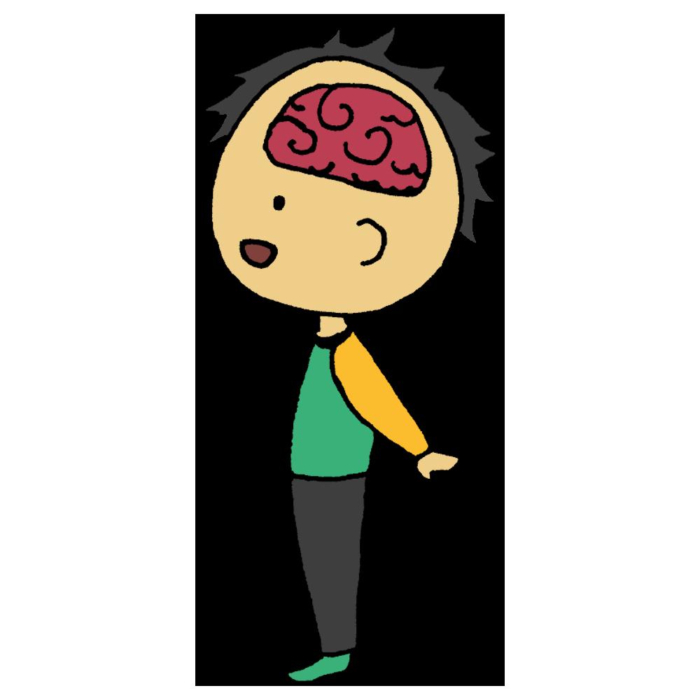 手書き風,人物,男性,脳,医療,人体のパーツ.人体,脳みそ,のう,ブレイン,考える,思考,身体,頭,断面図,断面,脳内