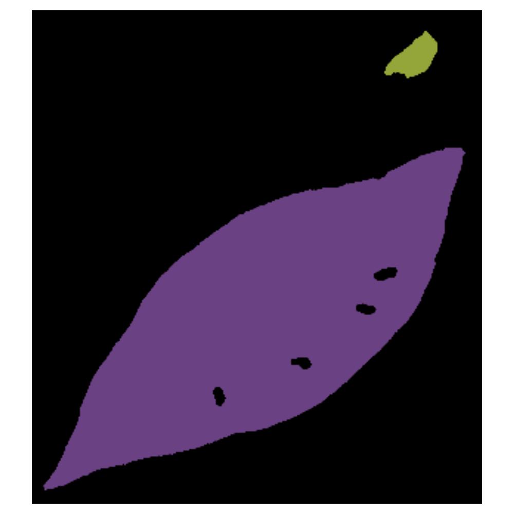 芽が出たサツマイモのフリーイラスト