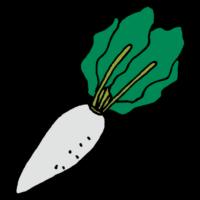 手書き風,野菜,食べ物,食べる,冬野菜,畑,食材,11月,12月,1月,2月,大根おろし