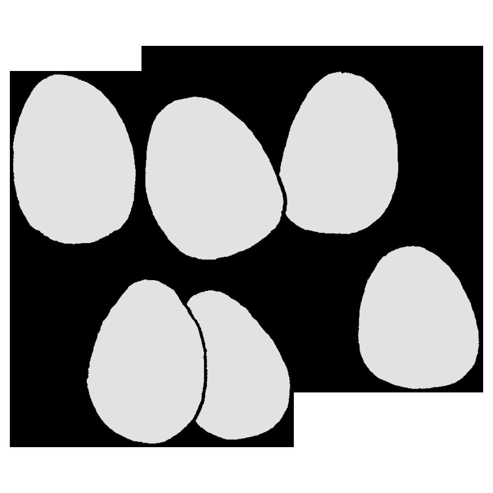 6個の卵のフリーイラスト