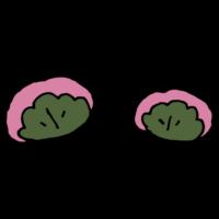 桜餅のフリーイラスト