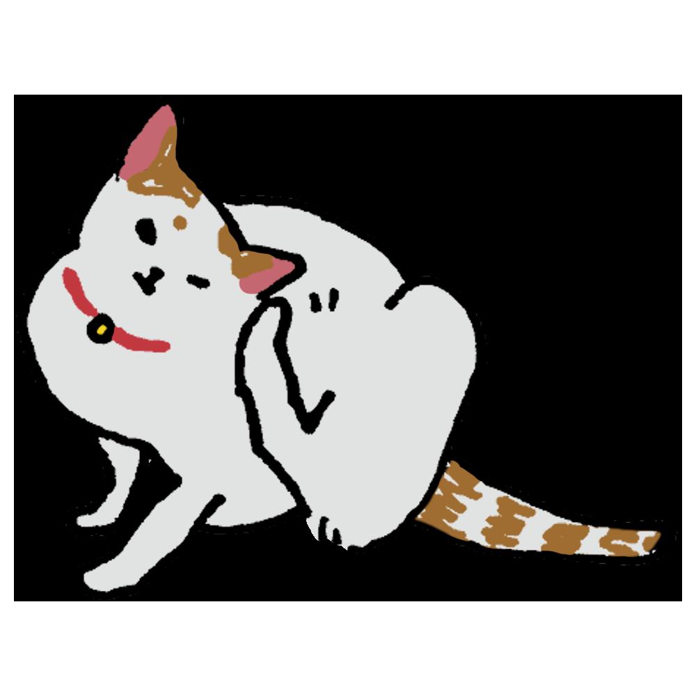 手書き風,足,脚,頭,ネコ,猫,ねこ,かゆい,かく,ポリポリ,可愛い,にゃんこ,にゃんにゃん,にゃん