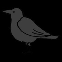 手書き風,動物,鳥類,鳥,烏,鴉,鵶,雅,からす,カラス,からす,飛ぶ,羽,害,ゴミ,ゴミ捨て場,とり,トリ,黒,ブラック