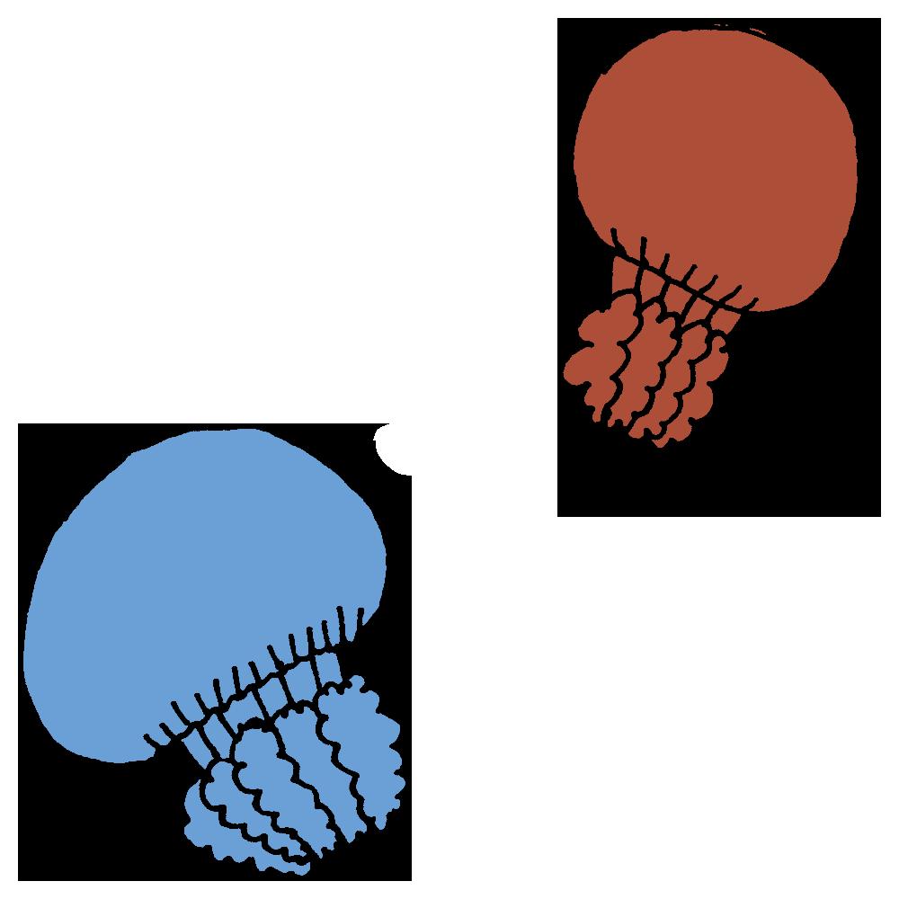 カラージェリーフィッシュというクラゲのフリーイラスト