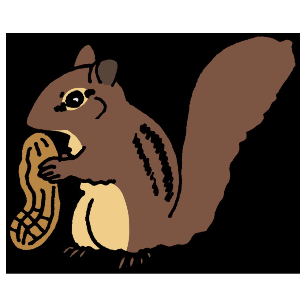 シマリス,しまりす,縞栗鼠,手書き風,動物,落花生,らっかせい,シベリアシマリス,頬袋,可愛い
