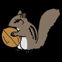 シマリス,しまりす,縞栗鼠,手書き風,動物,くるみ,クルミ,胡桃,シベリアシマリス,頬袋,可愛い