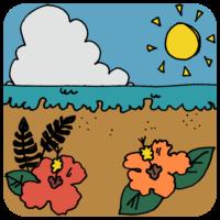 手書き風,ハイビスカス,花,海,自然,空,景色,綺麗,沖縄,南国,暖かい,沖縄県,雲,太陽,夏,7月,8月,旅行,お出かけ