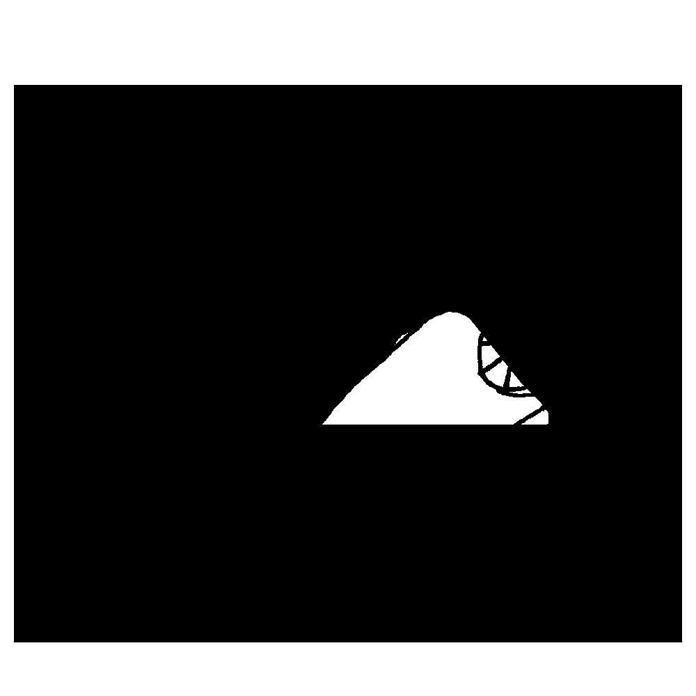 手書き風,魚,魚類,さんま,秋刀魚,サンマ,食べる,秋,9月,10月,細い,長い,焼き魚,料理,夕飯,大根おろし,日本食,和食
