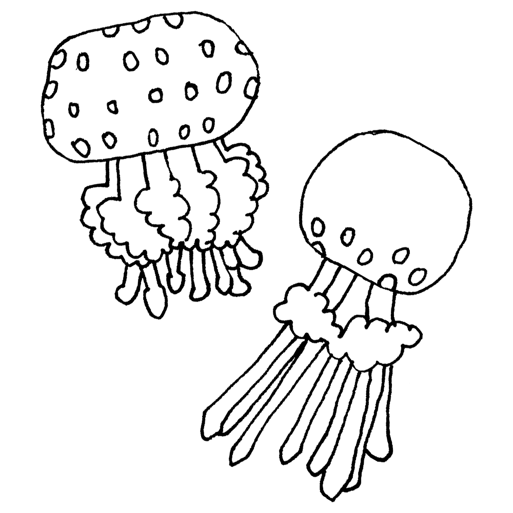 手書き風,生物,動物,海,フヨフヨ,浮かぶ,水族館,綺麗,クラゲ,くらげ,海月,プランクトン,浮遊生物,タコクラゲ,たこくらげ