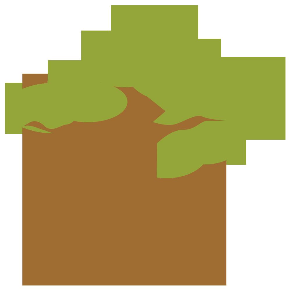 自然,植物,木