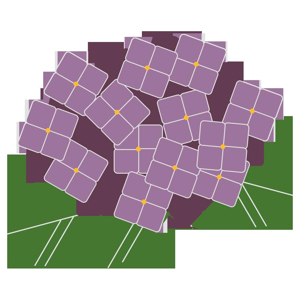 自然,植物,花,アジサイ,あじさい,紫陽花