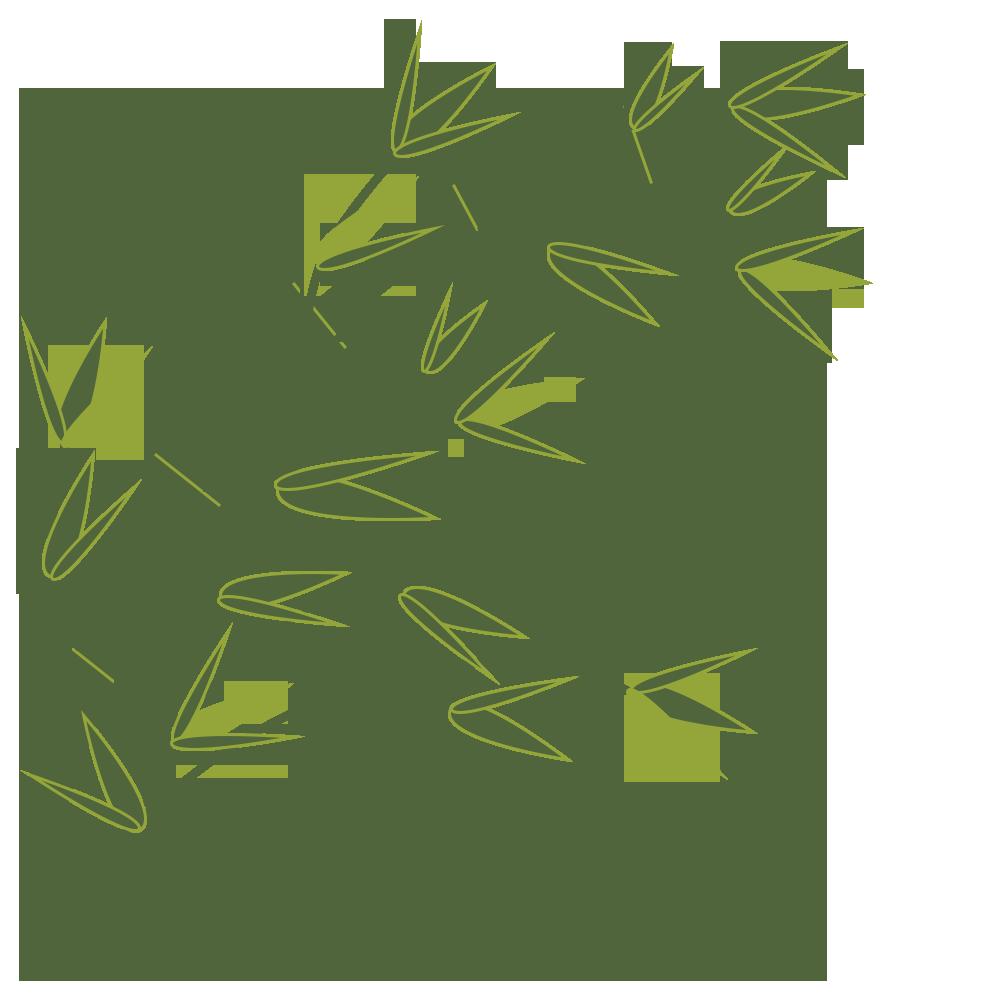 笹,七夕,シンプル,イベント,植物,葉