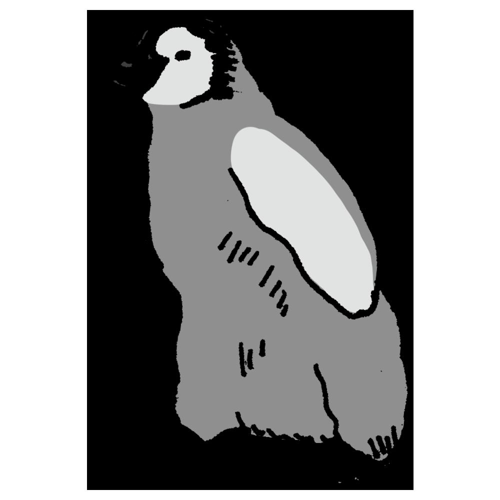 ペンギンの子供のフリーイラスト