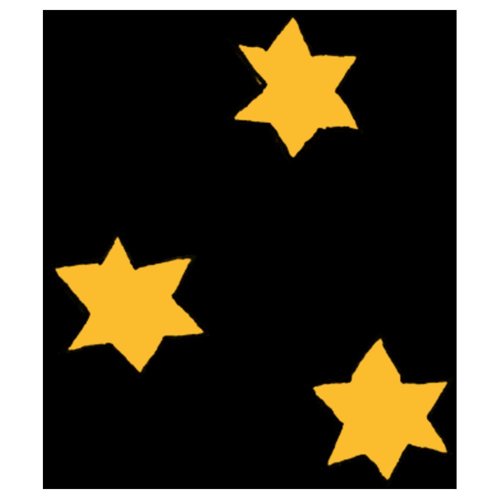 星,ほし,夜空,飾り,キラキラ,輝く,眩しい