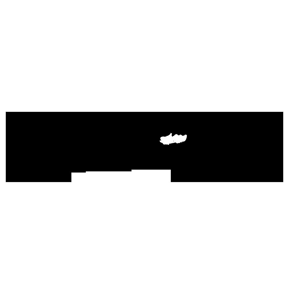 パラグアイカイマンのフリーイラスト