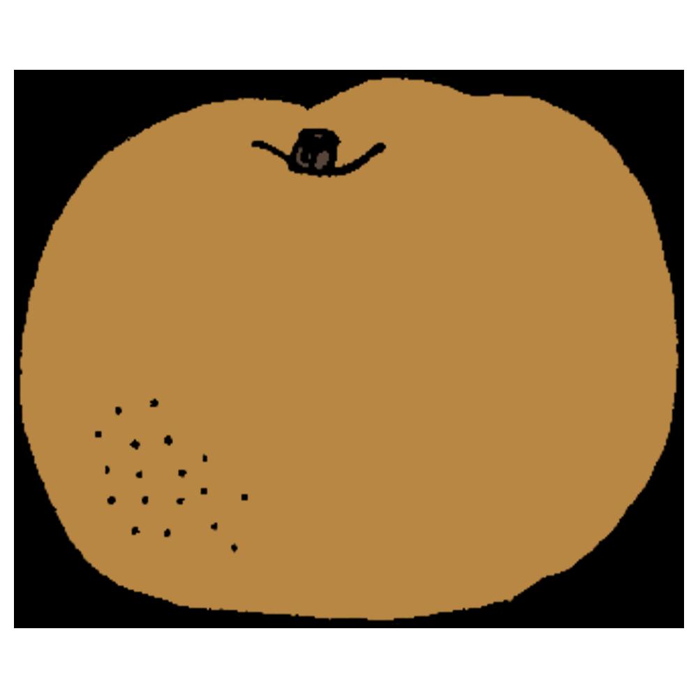 梨のフリーイラスト