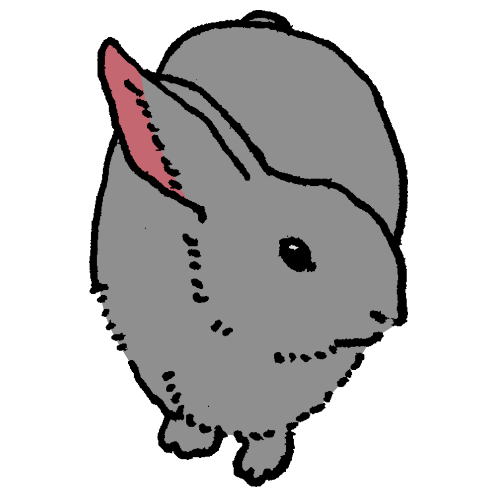 ペット,ウサギ,うさぎ,兎,干支,年賀状,飼育,動物,手書き風,哺乳類,もふもふ