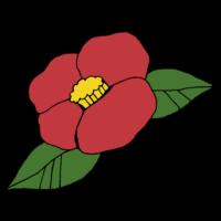 手書き風,植物,椿,つばき,ツバキ,花,綺麗,縁起物