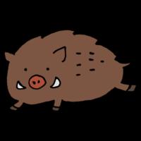 手書き風,動物,猪,いのしし,イノシシ,干支,十二支,お正月,年賀状,猪突猛進,哺乳類